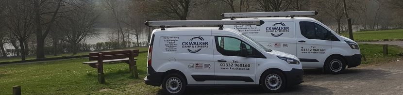 CK Walker Damp & Timbers - Damp Proofing & Timber Treatments